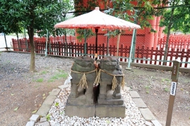 Asakusa Jinja Shrine